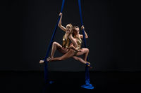 Two sexy girls posing gracefully on aerial silks