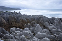 New Zealand - Pancake Rocks in Punakaiki in the west coast