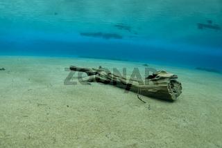 Unterwasseraufnahme vom Grünen See, Tragöss, Steiermark, Österreich