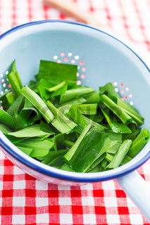 Ramson or wild garlic leaves
