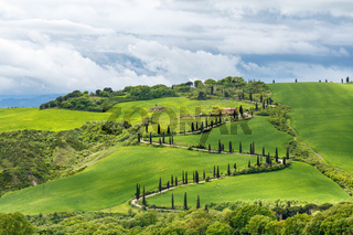 Tuscan landscape view with a curvy road on a hill