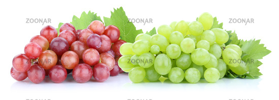 Grapes Grapes red green fresh fruit fruit exemption isolated isolated