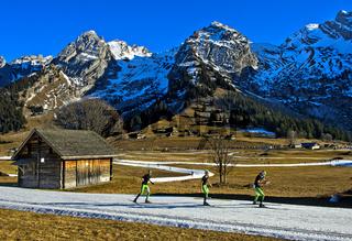 Drei Skilangläufer beim Trainin der Skating-Technik ohne Stöcke,Massif des Aravis, Frankreich