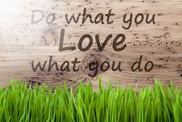 Bright Sunny Wooden Background, Gras, Quote Do What You Love