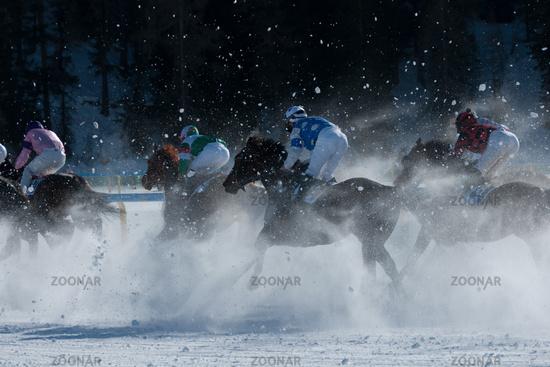 Galopp in the snow