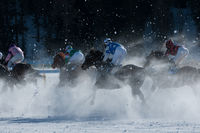 Galopp in the snow