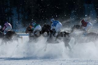 Galopp im Schnee