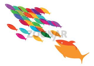 Fischflucht.jpg