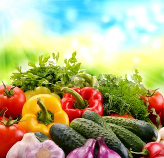 Variety of fresh organic vegetables