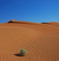 Namibia, Tiras