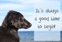 Dog At Ocean, Quote Always A Good Time To Begin