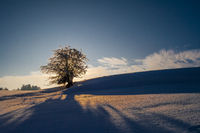 Evening mood in winter