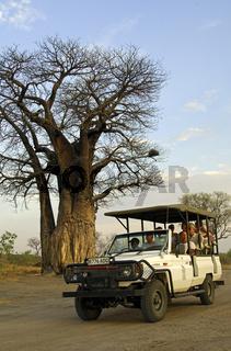 Geländewagen mit Touristen auf Safari