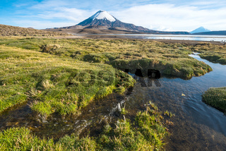 Snow capped Parinacota Volcano over the Lake Chungara, Chile
