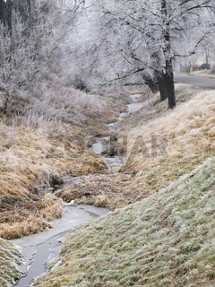 frost at the creek