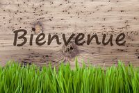 Bright Wooden Background, Gras, Bienvenue Means Welcome