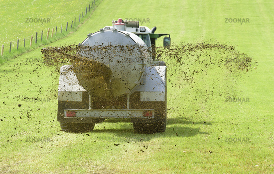 liquid manure in agriculture on meadow