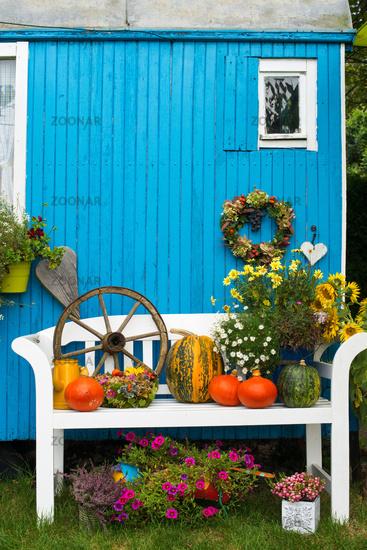 Autumn garden idyll
