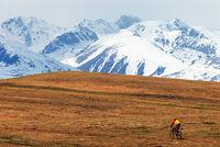 Mountain biker and snow peaks