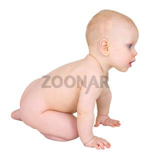 Cute infant crawl on white background