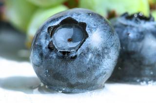 Closeup of a blueberry