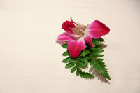 Beautiful Pink Red Flower With Green Leaves On White Background