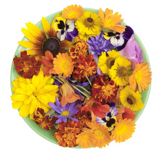Green plate and orange flowers