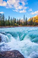 Powerful Athabasca Falls