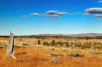 Patagonian landscape