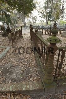 Middleton Cemetery walkway and metal fences located in Charleston, SC.