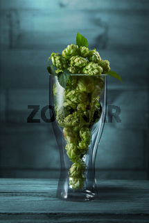Dried hops in a glass