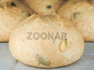 Pumpkin seed buns proofed on baking paper at close-up