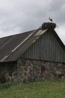 Bauernhaus mit Storchennest, Estland, Baltikum