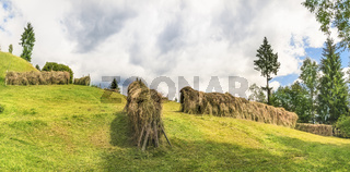 Haystacks on a meadow on a sunny day