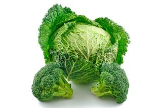 Ripe Broccoli and Savoy Cabbage Isolated