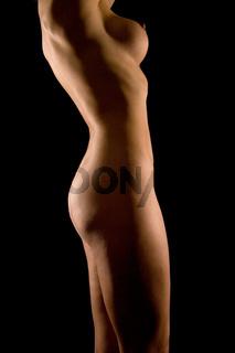 Frauenkörper - Body of a woman