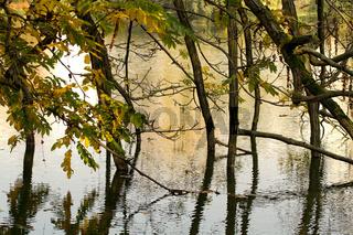 Lietzensee 129. Deutschland
