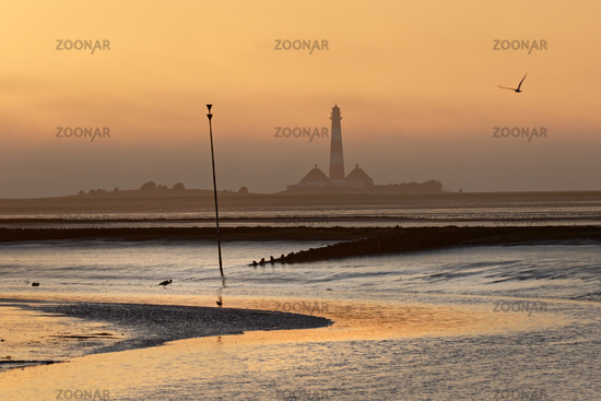 Westerheversand Lighthouse at sunset, Westerhever, Eiderstedt, North Frisia, Schleswig-Holstein, Ger