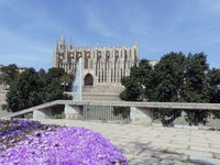 The landmark - The Cathedral La Seu - Palma de Majorca