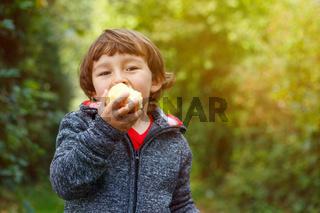 Kleiner Junge Kind Apfel essen Textfreiraum Garten draußen Herbst Natur