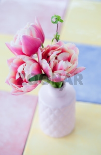 Pinke gefuellte Tulpen