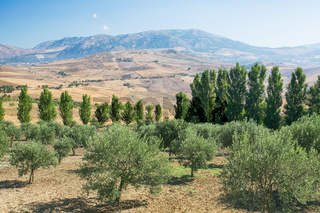 Inland mountain landscape of inner Sicily in summer day