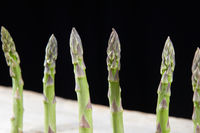 green asparagus standing in a row