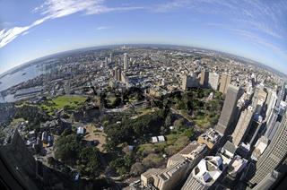 blick über sydney vom sydney tower aus gesehen