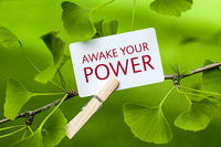 The Words Awake your Power in a Ginkgo Tree