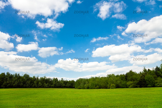 Beautiful green field and blue sky
