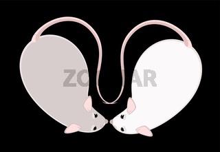 Lovely fluffy mice