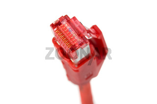 detail of a computer plug isolated on white background