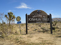 information sign at Joshua Tree National Park