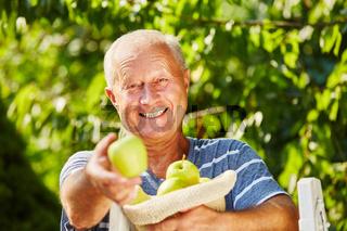 Senior freut sich über die Ernte